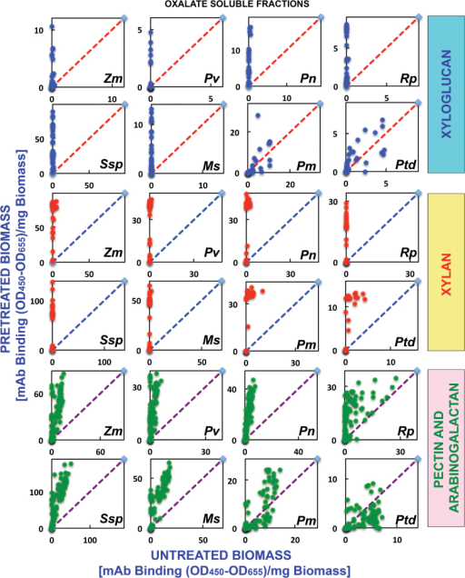 Scatter plot analyses of the relative abundance of major non-cellulosic cell wall glycan epitopes in oxalate extracts from eight phylogenetically diverse plant biomasses with or without AFEX™ pre-treatment. Oxalate extracts were prepared from cell walls isolated from diverse classes of plant biomass as explained in the Materials and Methods. The extracts were subsequently screened by ELISA using a comprehensive suite of cell wall glycan-directed mAbs. Comparisons of the relative abundances of epitopes characteristic of three cell wall polysaccharide classes, xyloglucans (blue dots), xylans (red dots), and pectin/arabinogalactans (green dots), in the oxalate extracts before and after medium severity AFEX™ pre-treatment of diverse plant biomass samples, corn stover (Zm), switchgrass (Pv), poplar (Pn), black locust (Rp), golden rod (Ssp), alfalfa (Ms), Douglas fir (Pm), and loblolly pine (Ptd). Data are re-plotted from Fig. 1, but are normalized to represent mAb binding strength per mass of original cell wall. The red dashed lines denote the expected position if the abundance of these glycan epitopes was unchanged after AFEX™ pre-treatment. Data points above and below the dashed lines represent increased or decreased glycan epitope abundance, respectively, after AFEX™ pre-treatment. Note that the y-axis scales are different for individual plots to permit visualization of trends and magnitudes of normalized epitope abundances.