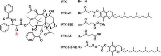Chemical structures of PTX, PTX-VE, PTX-SEE, PTX-SA, and PTX-S-S-VE.