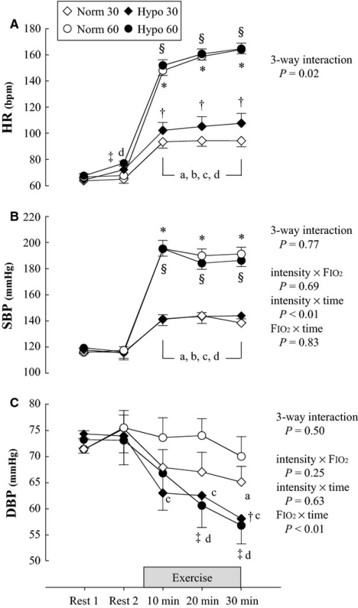 Cardiorespiratory variables at rest and during exercise under normoxic and hypoxic conditions. (A) HR, (B) SBP, and (C) DBP. Values expressed as mean ± SE. SBP, systolic blood pressure; DBP, diastolic blood pressure; HR, heart rate; Norm 30, 30% O2peak in normoxia; Norm 60, 60% O2peak in normoxia; Hypo 30, 30% O2peak in hypoxia; Hypo 60, 60% O2peak in hypoxia. *P < 0.05 Norm 30 versus Norm 60, §P < 0.05 Hypo 30 versus Hypo 60, †P < 0.05 Norm 30 versus Hypo 30, ‡P < 0.05 Norm 60 versus Hypo 60, a: P < 0.05 versus Rest 1 in Norm 30, b: P < 0.05 versus Rest 1 in Norm 60, c: P < 0.05 versus Rest 1 in Hypo 30, d: P < 0.05 versus Rest 1 in Hypo 60.