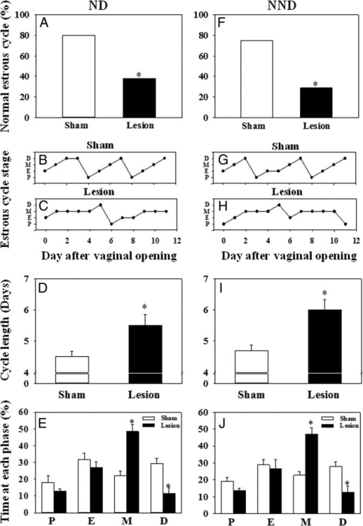 The effect of MePD lesions on estrous cyclicity in female rats fed with a normal chow diet (ND) or a 25% nonnutritive bulk diet (NND). Cyclicity was determined by analyzing the daily vaginal cytology for 12 consecutive days from the day of vaginal opening. A, In ND-fed rats, an MePD lesion resulted in a significant decrease in the percentage of normal estrous cycle vs sham-lesioned controls. Representative examples of estrous cycle are presented for sham-lesioned (B) and lesioned (C) rats. D, Cycle length was significantly extended after MePD lesion vs controls. E, Time spent in the metestrous stage was extended, whereas time spent in diestrus was decreased by MePD lesion compared with controls. F, Lesioning the MePD in NND fed rats also resulted in a significant decrease in the percentage of normal estrous cycle vs sham-lesion controls. Representative examples of the estrous cycle are presented for sham-lesioned (G) and lesioned (H) rats. I, MePD lesions also significantly extended cycle length compared with sham lesions in the NND fed rats. J, Time spent in the metestrous stage was extended, whereas time spent in diestrus was decreased by the MePD lesion compared with controls. Results are presented as means ± SEM. *, P < .05 vs controls (means ± SEM; n = 7–11 per group). D, diestrus; E, estrus; M, metestrus; P, proestrus.