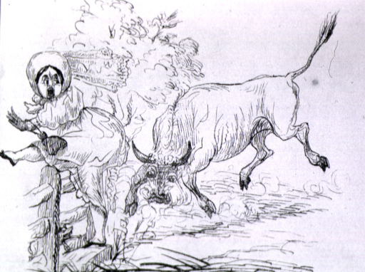 <p>A bull charges a woman as she leaps over a fence.</p>