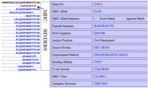 Mapping of peptide in MHCBN database; a) mapping of MHCBN peptides on B-cell epitope, and b) full information about a MHCBN peptide.
