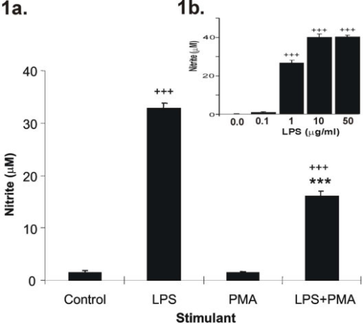 a. The effect of PMA on LPS stimulated NO production in RAW 264.7 cells. RAW cells were stimulated for 24 hr with either vehicle alone (control), 1 μg/ml LPS, 50 ng/ml PMA or 1 μg/ml LPS with 50 ng/ml PMA. NO levels were assessed by Greiss assay. LPS alone significantly increased NO production whereas PMA alone had no effect. PMA significantly inhibited LPS -stimulated NO production. Figure 1b (inset) displays the concentration-response curve for LPS-stimulated NO production over 24 hrs. Results are expressed as mean ± SEM; +++p < 0.001 vs control, ***p < 0.001 vs LPs-stimulated; n = 6 for the effects of PMA and n = 9 for the concentration-response curve.