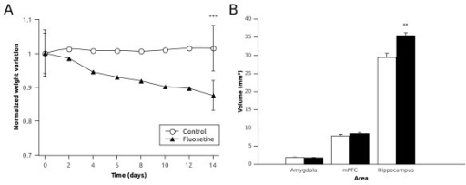 Graphs showing (A) the body weight change through the experiment for the control and fluoxetine group and (B) the effect of the chronic fluoxetine treatment on the volume of the different structures studied. Statistically significant (* P < 0.05, ** P < 0.01, *** P < 0.001) Student t-test.