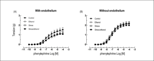 Concentration-response curves to phenylephrine obtained from rings of thoracicaorta with and without endothelium taken from animals exposed to ethanolconsumption and/or stress. Values are expressed as means ± SEM. The numberof independent determinations was 8-10.