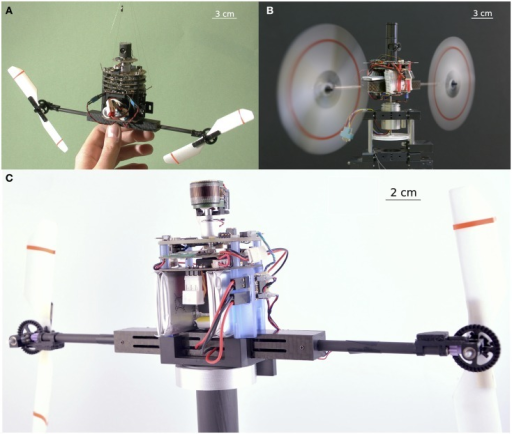 "Three generations of twin-rotor robots equipped with a vibrating eye inspired by the micro-movements of the fly's retina (see Section ""Retinal Micro-Movements in the Fly's Compound Eye: A Review""). All these sighted robots are endowed with hyperacuity, i.e., they are able to locate and smoothly track a moving target with a much greater accuracy than that imposed by limitations of the pixel pitch of their eyes. (A) The 100-g OSCAR robot with an eye composed of only 2 pixels, scanning back and forth at a frequency of 10 Hz with an amplitude of 9° (Viollet and Franceschini, 1999a,b, 2001). (B) The VODKA robot equipped with its scanning eye, on which periodic micro-scanning movements were imposed by means of a piezo bender translating the two photodiodes placed behind a fixed lens (Kerhuel et al., 2007, 2010, 2012). The VODKA robot was able to locate a contrasting feature with a 900 times greater accuracy than its static optical resolution (without any micro-movements of the eye). (C) The HyperRob robot equipped with the active version of the artificial curved compound eye called CurvACE (Floreano et al., 2013)."