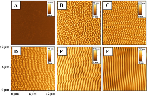 AFM images of PMMA-FR samples modified under different angles of laser beam incidence. Laser (50 pulses and 12 mJ cm−2). (A) Non-irradiated. Irradiated at (B) 0°, (C) 20°, (D) 30°, (E) 40°, (F) 50°. Insets give the amplitude scale bars.