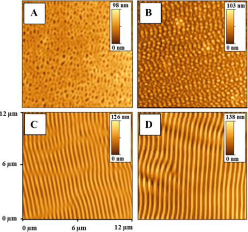 AFM images of the PMMA-FR films modified by laser (by 50 pulses and 12 mJ cm−2). Thicknesses of films: (A) 0.17 μm, (B) 0.2 μm, (C) 0.67 μm, (D) 2.1 μm.