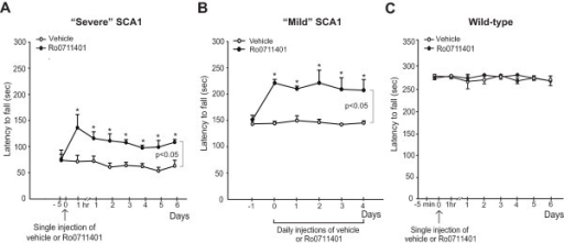 Pharmacological enhancement of mGlu1 receptors causes a prolonged symptomatic benefit in SCA1 mice. Motor performance on the rotarod in SCA1 mice with severe motor impairment at different times following a single injection of vehicle or Ro0711401 is shown in (A), where values are means ± S.E.M. of 6 mice per group. *p < 0.05 vs. the corresponding values at time 0; Two-way ANOVA for repeated measures + Fisher's LSD; F(7,35) = 2.48, F(1,10) = 21.003, and F(7,35) = 2.321 for time, treatment, and time x treatment, respectively. Motor performance in SCA1 mice with mild impairment treated daily with Ro0711401 is shown in (B), where values are means ± S.E.M. of 6 mice per group. *p < 0.05 vs. the corresponding pre-treatment values; Two-way ANOVA for repeated measures + Fisher's LSD; F(5,15) = 4.248, F(1,11) = 37.408 and F(5,15) = 6.078 for time, treatment and time x treatment, respectively. The lack of motor effect of single injection of Ro0711401 in wild-type littermates is shown in (C), where values are means ± S.E.M. of 4 mice per group.