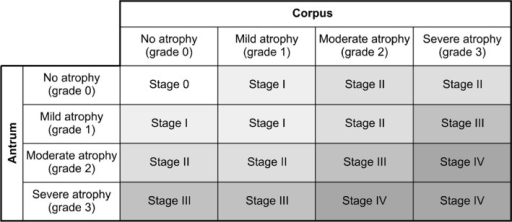 Gastritis staging: the OLGA system. Atrophy is defined as loss of appropriate glands (with or without metaplasia). In each compartment, atrophy is scored in a four-tiered scale (0–3) according to the visual analogue scale of the updated Sydney system. Adapted from Rugge et al.64