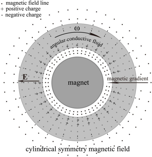 Third non-frozen scenario.In a cylindrically symmetric magnetic field, the fluid rotation around the magnetic axis would not result in frozen-in drag, even if the outer and inner fluids rotate at different angular speeds. This scenario mirrors the situation near the equatorial plane of aligned pulsar or the Sun.