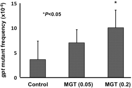 The gpt mutation frequencies in the lungs of mice after multiple intratracheal instillations of MGT. Male mice were treated with multiple (0.05 or 0.2 mg/mouse × 4 times) doses of MGT, and mice were sacrificed eight weeks after MGT administration. The data represent the mean ± SD; *P < 0.05 by the Student's t-test vs. the corresponding vehicle control mice.