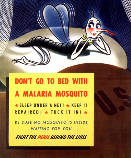 <p>Multicolor poster.  Visual image is an illustration of a cartoon-character mosquito sitting on a pillow on what appears to be an Army bed.  Title, caption, and note in yellow square superimposed on illustration.  Publisher information in lower left corner of yellow square.</p>