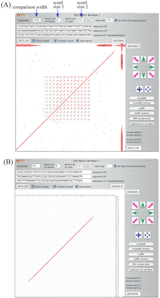 Example of dotmatch analysis in GenomeMatcher. (A) DNA regions of CRISPR [11] in Escherichia coli K12 MG1655 genome (U00096). MG1655 genome was placed both on x- and y axes. (B) Close-up view of panel A. Exact matches with sizes larger than 'word size 1' are shown in black and those larger than 'word size 2' in red. As in the main window, regions to be compared are easily be set by dragging or pressing the navigation buttons.