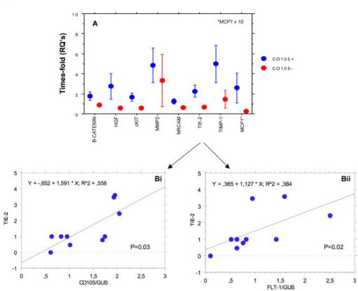 A, shows relative expression of de-regulated angiogenic genes in CD105/Flt-1 positive (red) and negative (blue) samples. Bi and ii, shows regression analysis and significant correlation (Spearman rank) between angiogenic gene expression and the markers CD105 (i) and Flt-1 (ii) for Tie-2, as an example. Other genes produced similar results.