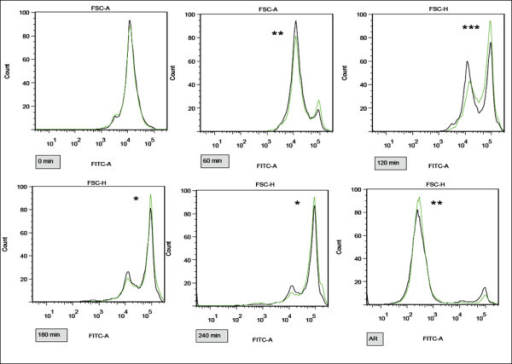 Differences in capacitation and AR progress between samples A-D exposed by 1 μM E2 and control samples measured by flow cytometry with ACR.2 antibody. Representative pictures of FITC channel histograms at 0, 60, 120, 180, 240 min and after induced AR. Control samples in black, experimental samples in green. The increase in fluorescent intensity (right peak) corresponds to the capacitation progress. Differences among the control and experimental samples in arithmetic mean of the fluorescent intensity in the FITC channel were assessed by t-test. *P < 0.05, **P < 0.01, ***P < 0.001. The most significant difference is recognizable at 120 min.