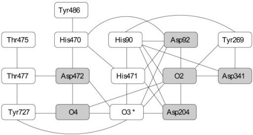 example of a hydrogen bond network hydrogen bond netwo open i
