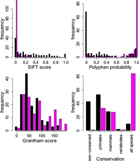 Comparison of the distributions of predictor variables for benign and pathogenic variants. Histograms depict the numbers of variants that are pathogenic (magenta bars) and benign (black bars) with predictor values within a range as indicated on the x-axes for the four predictor variables. Conservation categories are defined in the Methods section.