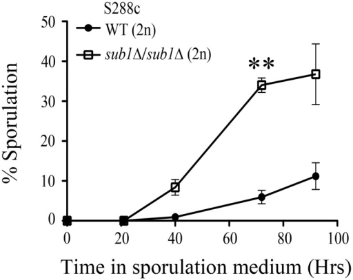 Deletion of SUB1 shows an increase in sporulation efficiency compared to wild type cells.Sporulation was measured at different time points as indicated after transfer of cells from presporulation to sporulation medium. At least 1000 cells were counted at each time point in two independent replicate experiments. Double asterisk indicates P value of < 0.01.