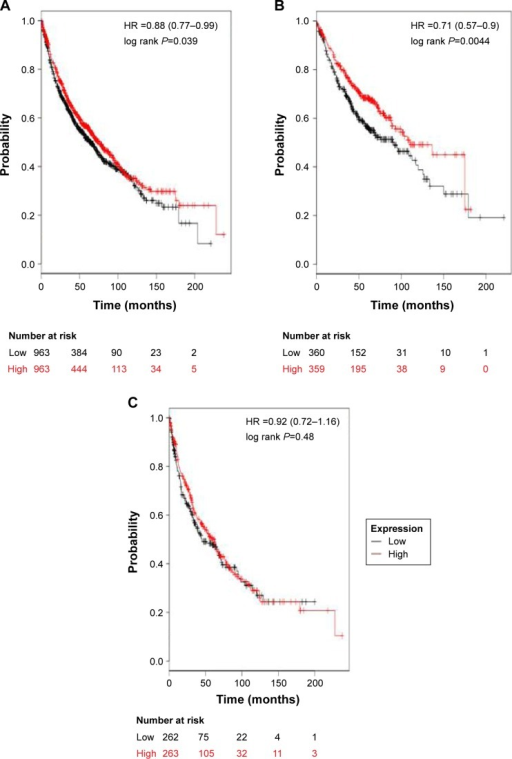 The prognostic value of ALDH1A1 expression.Notes: The desired Affymetrix ID is valid: 212224_at (ALDH1A1). (A) Survival curves are plotted for all patients (n=1,926). (B) Survival curves are plotted for adenocarcinoma (n=719). (C) Survival curves are plotted for squamous cell carcinoma (n=525). Data was analyzed using Kaplan Meier Plotter (www.kmplot.com).Abbreviation: HR, hazard ratio.