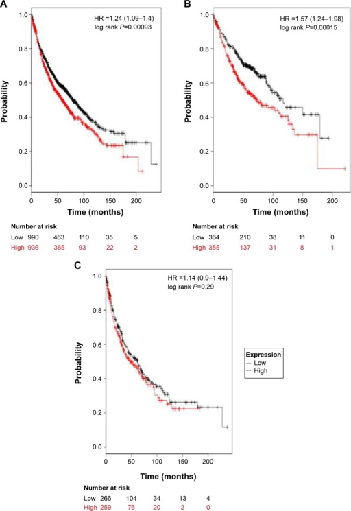 The prognostic value of ALDH1A2 expression.Notes: The desired Affymetrix ID is valid: 207015_s_at (ALDH1A2). (A) Survival curves are plotted for all patients (n=1,926). (B) Survival curves are plotted for adenocarcinoma (n=719). (C) Survival curves are plotted for squamous cell carcinoma (n=525). Data was analyzed using Kaplan Meier Plotter (www.kmplot.com).Abbreviation: HR, hazard ratio.