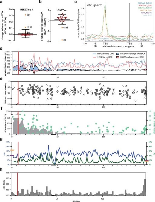 Correlation of genomic neighborhood and XIST-induced silencing on chromosome 8. a ChIP-seq changes observed for H3K27me3 on each chromosome, with chromosome 8 also subdivided into 8p (arm with integration) and 8q. H3K27me3 showed significant (P = 3.3e−243, paired t-test) changes for chromosome 8 with the genome showing no significant change. b ChIP-seq changes observed for H3K27ac on each chromosome, with chromosome 8 also subdivided into 8p (arm with integration) and 8q. The chromosome 8 decrease (P = 2.2e−40) as well as the genome-wide increase (P = 2.0e−205) were both highly significant. c Average H3K27ac and H3K27me3 normalized across genes on 8p. Normalized ChIP-seq level are shown across genes and for the 10 kb upstream and downstream of genes before XIST expression (NoDOX) and after XIST expression (DOX) as well as for input, color-coded as outlined. d Total H3K27me3 (blue line) and H3K27ac (pink line) in No DOX overlaid with change in H3K27me3 (blue), H3K27ac (pink) along chromosome 8 after 5 days of DOX induction of XIST. e Change in total reads for genes with average ≥5 FPKM shown as percent silencing. f Density of nuclear contacts with the 8p integration site (AGPAT5) as identified in IMR90 fibroblast cells by HiC [45] in 1 Mb bins (grey shading). Allelic silencing of genes is shown superimposed as green dots. g Density of LINE (blue line) and ALU (green line) repetitive elements per 1 Mb bin. Shown on the axes are the average genome (purple) and X-chromosomal (orange) densities of the elements. h Gene density in 1 Mb bins along the chromosome