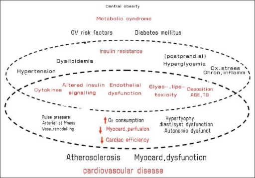 The interrelations between metabolic syndrome and cardiovascular disease.
