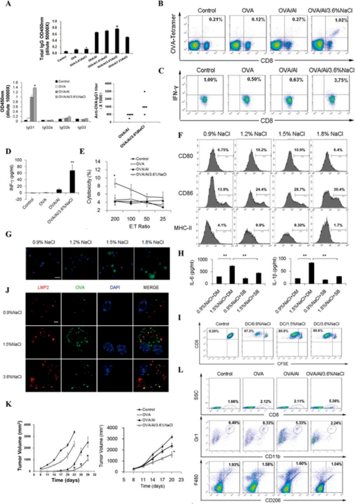 Simultaneous enhancement of cellular and humoral immunity by the high-salt formulation of Al(OH)3 adjuvant. (A) High salt concentration enhances Al(OH)3 adjuvant-induced humoral immunity. C57BL/6 mice (n = 5 per group) were vaccinated subcutaneously three times with OVA/Al complex containing different concentrations of NaCl (5 μg OVA per mouse). Seven days after the third immunization, the mouse serum was collected and levels of the total IgG and IgG subclasses and IgG1 titer were determined by ELISA. (B-E) OVA/Al/high salt vaccine induces specific cellular immunity. C57BL/6 mice were immunized in the same way as described in A. Lymphocytes were isolated from the spleen and further incubated in vitro with CD8+-specific OVA257–264 peptides (10 μg/ml) for 3 days. The generation of CD8+ CTLs was determined by FCM using PE-conjugated H-2Kb/OVA257–264tetramer (B). The expression of IFN-γ was examined by FCM (C) and ELISA (D). The same lymphocytes were tested for CTL-mediated cytotoxicity against E.G7-OVA cells by a standard 6 h 51Cr release assay (E). (F) High concentrations of NaCl promote the maturation of DCs in vitro. Bone marrow-derived DCs isolated from C57BL/6 mice were cultured in medium with the indicated NaCl concentrations for 48 h and the expression of maturation markers was analyzed by FCM. (G) High concentrations of NaCl promote the antigen uptake of DCs in vitro. DCs were incubated with 2 μg/ml Alexa Fluor 488-labeled OVA for 1 h at 37 °C in medium with the indicated NaCl concentrations and analyzed under a fluorescent microscope. Scale bars, 20 μm. (H) High concentration of NaCl promotes secretion of the pro-inflammatory cytokines by DCs through the p38 MAPK pathway in vitro. DCs were pretreated with 10 μM SB203580 (SB) or DMSO (DM) for 2 h and then treated with 0.9% or 1.5% NaCl for 48 h in the presence of 5 μM SB or DM. The levels of pro-inflammatory cytokines in the supernatant were measured by ELISA. (I-J) High salt concentration induces antigen cross-presentation in DCs. DCs were cultured in medium with the indicated NaCl concentrations containing 10 μg/ml OVA. Then the stimulated DCs were co-cultured with CFSE-labeled CD8+ T cells from OT-I mice. The proliferation of T cells was assessed by FCM after 3 days of co-culture (I). DCs were treated with 2 μg/ml Alexa Fluor 488-labeled OVA in the presence of the indicated NaCl concentrations for 1 h, stained with rabbit anti-LMP2/Cy3 antibody and DAPI, and visualized under a confocal laser scanning microscope. Scale bars, 5 μm (J). (K) High-salt formulation potentiates the antitumor effect of OVA/Al vaccine in vivo. In a prophylactic model (left), C57BL/6 mice (n = 10 per group) were immunized with different vaccines for three times and then challenged subcutaneously with 3 × 106 E.G7-OVA cells 1 week after the third immunization. In a therapeutic model (right), mice (n = 7 per group) were treated by subcutaneous injection of different vaccines once a week for 3 weeks starting on day 3 after subcutaneously introduction of 3 × 106 E.G7-OVA cells. The tumor volume was measured every 3 days. (L) The high-salt formulation of OVA/Al diminished immune suppressive cells in tumor microenvironment. After the third treatment, a single-cell suspension of tumor tissues was prepared. The percentages of infiltrating CD8+ lymphocytes, MDSCs and M2 macrophages were analyzed by FCM.