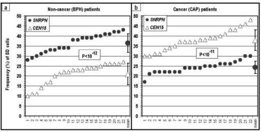 SD values for SNRPN and CEN15 in cells of two groups of urology patients: (a) patients free of cancer (BPH); and (b) cancer patients (CAP). The values in each frame for each locus are presented in increasing order. P – the level of significance of the differences between the SNRPN and the CEN15 loci within a group of patients.