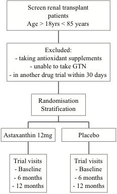 Flow chart of Xanthin trial.