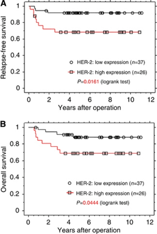 Kaplan–Meier survival curves of 63 patients with endometrial cancer in relation to HER-2 expression. (A) Relapse-free survival (B) Overall survival.
