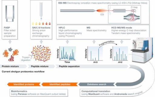 Workflow of high resolution and quantitative proteomics.