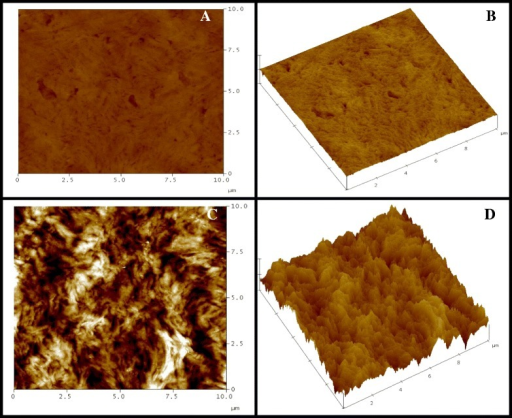 The AFM images of human dermal fibroblasts cultured on a film sheet composed of random PHBV with 23% 3HV content; (A) 2-D image and (B) 3-D image of the original surface of the film sheet before cell cultivation for one month; (C) 2-D image and (D) 3-D image of the same film sheet after cell cultivation for one month.