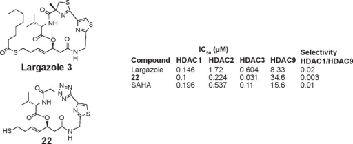 Chemical structures of histone deacetylase inhibitors synthesized via click chemistry.Abbreviations: HDAC, histone deacetylases; SAHA, suberoylanilide hydroxamic acid.