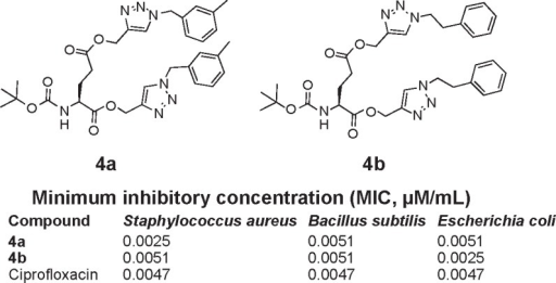 Chemical structures of topoisomerase II inhibitors synthesized via click chemistry.