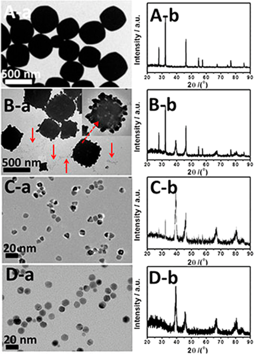 TEM images and XRD patterns of the intermediates collected at different growth stages: (A) 0 min, (B) 30 min, (C) 1 h and (D) 2 h.