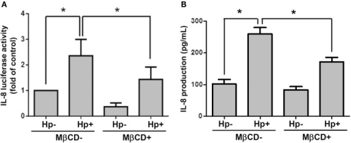 Disruption of lipid rafts reduces H. pylori-induced IL-8 production. AGS cells were transfected with an IL-8 luciferase reporter in the absence or presence of 5 mM MβCD prior to infection with H. pylori (MOI = 100) for 6 h. (A) Cell lysates were subjected to luciferase activity assay to assess IL-8 promoter activity. (B) IL-8 secretions in the cell culture supernatants were assessed by ELISA. Statistical significance was evaluated by Student's t-test (*P < 0.05).