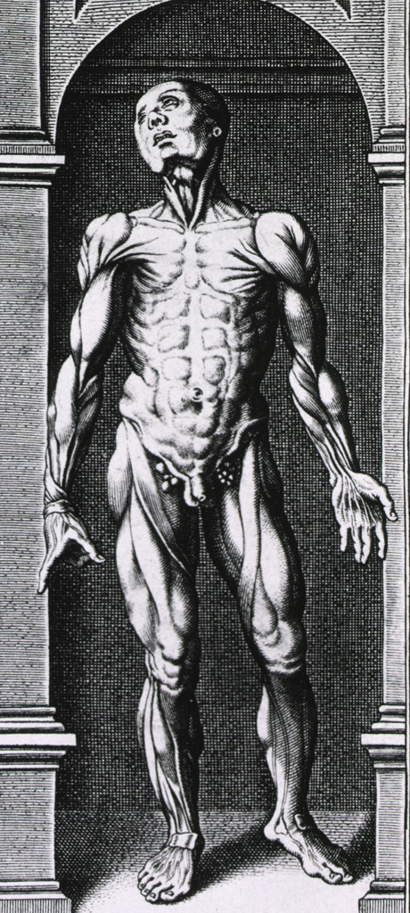 <p>Full length view of a musculature standing in a small alcove.</p>