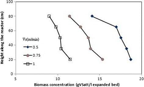 Profiles of biomass concentration at different upflow velocities.