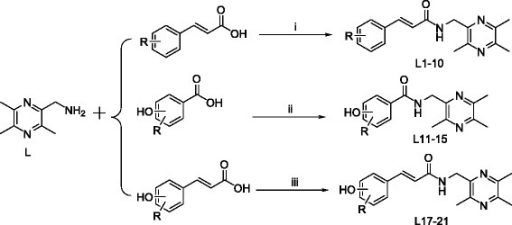 Synthetic routes to ligustrazine derivatives L1–L15, L17–L21. Reagents and Conditions: (i) anhydrous CH2Cl2, EDCI/(CH3CH2)3 N, r.t., 12 h; (ii) anhydrous DMF (L11 anhydrous CH2Cl2), EDCI/HOBt, r.t., 12 h; (iii) anhydrous DMF (L21 DMI), EDCI/HOBt, r.t., 12 h.