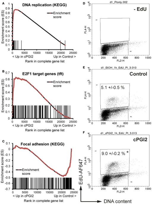 cPGI2 induces progenitor activation through cell cycle and adhesion pathways. Lin−CD29+CD34+Sca-1+ cells were cultured in adipogenic media ± cPGI2 for 24 h. (A–C) RNA was obtained for expression profiling with Illumina beadchip arrays (n = 3). Enrichment plots of the indicated gene sets were obtained by GSEA (cPGI2 vs. Control) with the KEGG pathway [(A,C), see Table 2] or the transcription factor motif (B) gene set collections. Vertical bars represent the individual genes of the gene set/pathway ranked according to their regulation by cPGI2. X-axis values represent the rank within the complete ranked gene list (transcriptome). The enrichment score (ES) reflects the degree to which a gene set is overrepresented at the top or bottom of the complete ranked gene list. (E,F) Cells were pulse-labeled with EdU for 1 h, processed for EdU-AlexaFluor647 and propidium iodide staining, and analyzed by flow cytometry (n = 3). Cells cultured without EdU served as negative control (D). The mean percentage of EdU+ cells is shown (* indicates t-test cPGI2 vs. Control p = 0.003).