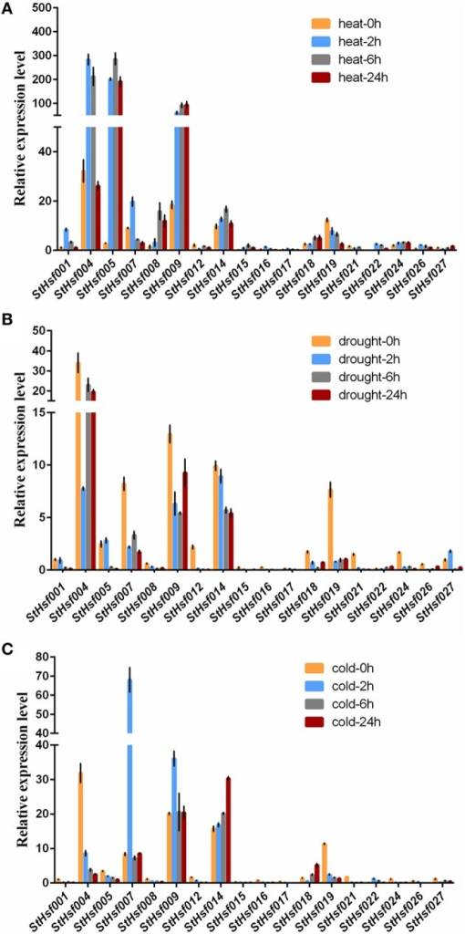 Relative mRNA abundance of StHsf members in response to heat (A), drought (B) and cold stress (C) in the leaves.