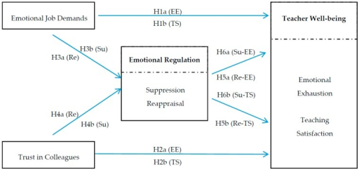 The hypothesized model. Note: EE = emotional exhaustion, TS = teaching satisfaction, Su = Suppression, Re = Reappraisal.