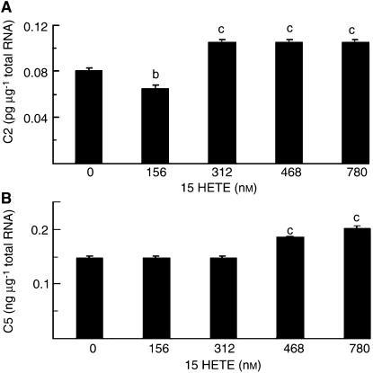 Effect of treatment of C2C12 myotubes with 15(S)-HETE for 24 h on expression of mRNA for (A) C2 proteasome subunit, (B) C5 proteasome subunit, as determined by quantitative competitive RT–PCR. Results represent mean±s.e.m., where n=3 representing three separate determinations on different samples. Differences from control are indicated as (b) P<0.01 and (c) P<0.001.