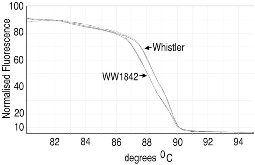 HRM analysis of Rht-1 variants at the C-terminal GRAS domain in WW1842 X Whistler DH population.Normalized HRM curve for genotyping genetic variation in the Rht-1 gene bounded by the primers Rht-F6R6_F1a, Rht-F6R6_F1b and Rht-F6R6_FR1 (Table 1). The results are shown for parents, WW1842 and Whistler and eight progeny lines of the DH population (180 lines). Genotype data enabled the mapping of the molecular variation on chromosome 4A.