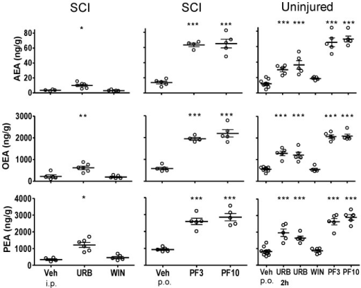 Fatty acid amide concentrations in lumbar spinal cord from SCI rats or uninjured rats following treatment with FAAH inhibitors, WIN 55,212-2 and vehicle.Rats were treated with either URB597 (URB; 3 mg/kg, i.p.), WIN 55,212-2 (WIN; 3 mg/kg, s.c.) or vehicle (Veh; 1.5 ml/kg, i.p.) for seven days and euthanized four hours following the last treatment. One group of uninjured rats was treated once with URB597 and euthanized two hours (2 h) following treatment. Rats that received PF-3845 (PF3, PF10) were treated once (3, 10 mg/kg, p.o.) and euthanized four hours following dosing. Levels of AEA, OEA and PEA from each rat are shown, the thick horizontal line is the mean and the thin horizontal lines are the S.E.M. n = 4–10/group. * p<0.05, **p<0.01, ***p<0.001 vs. vehicle (Student's t-test).