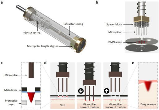 Schematic illustration of the Microlancer and its performance.(a) Main units of Microlancer. (b) A 3 × 3 DMN array with respect to the other components of the Microlancer. (c) The positioning of the hole and its alignment with the micropillar results in the physical detachment of the DMNs. A protective layer ensures that only DMNs, and not the surrounding layer, are detached from the main layer. (d) Activation of the system releases the micropillars and inserts the DMNs into the skin through the injector spring. (e) DMNs are fully inserted into the skin and immediately dissolved.