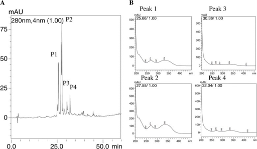 "Chromatographic profile of HEE and the respective spectra of the prominent peaks. The experimental 5:100% water/methanol condition gradient, measured at a wavelength of 250 nm - 350 nm with the absorption spectra of UV/Vis prominent peaks (A) of spectra, and segmented (B) for each peak: Peak 1 - band ""A"" 271 nm, and band ""B"" = 334 nm; Peak 2 - band ""A"" 271 nm, and band ""B"" 336 nm; Peak 3 - band ""A"" 269 nm, and band ""B"" 334 nm; Peak 4 - band ""A"" 270 nm, and band ""B"" 335 nm."