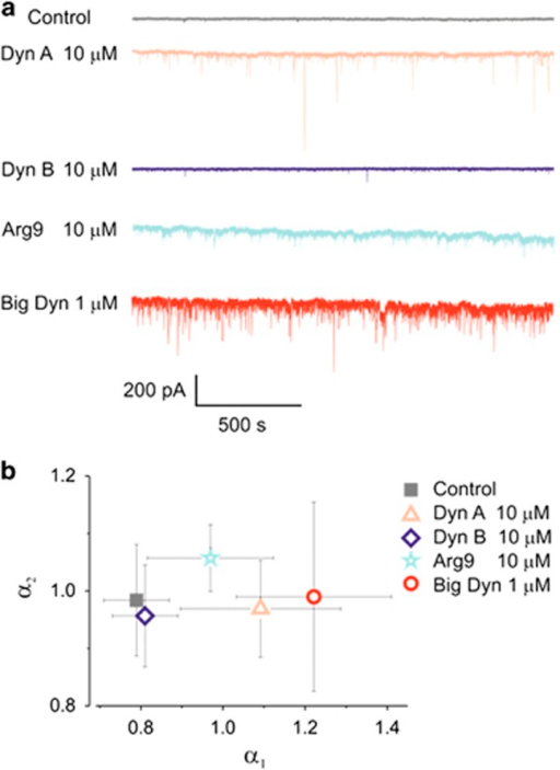 Activity of dynorphins is compared with the activity of synthetic nona-arginine (Arg9). (a) Representative recordings of membrane current noise measured in DRG neurons. (b) Summary results for scaling exponents α1vs α2 under different peptides show their activity profile. All data were obtained from DRG neurons clamped at −100 mV