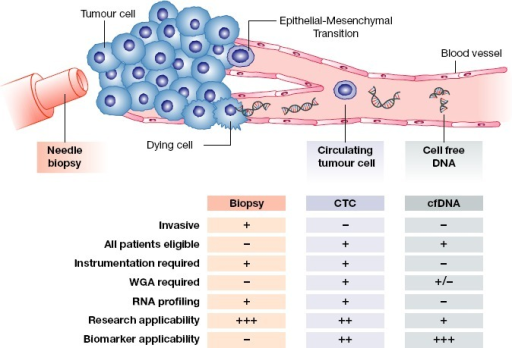 Applicability of the liquid biopsy for CRPCSchematic showing the relative strengths and weaknesses of a tumour tissue biopsy, circulating tumour cell analysis, and cell-free DNA analysis for monitoring patients with CRPC. WGA = whole-genome amplification.